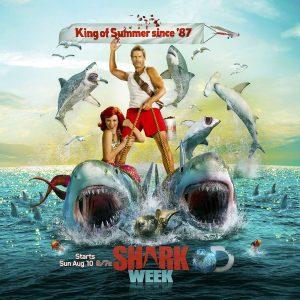 Live Shark Week every week – top shark jobs