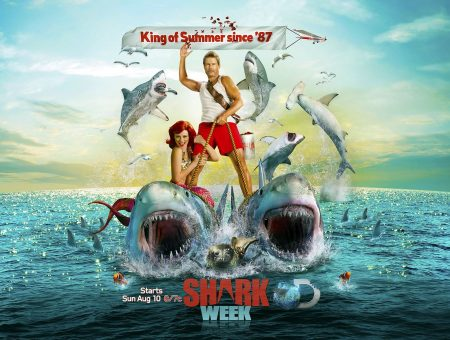 Live Shark Week every week – top shark jobs