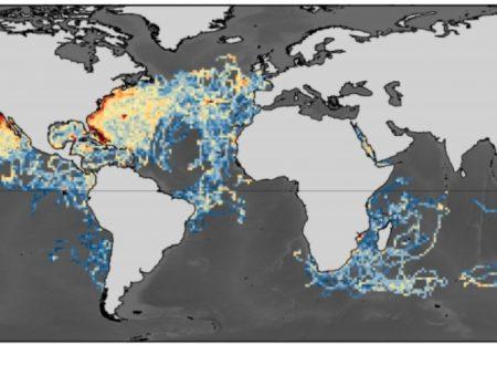 Industrialised fishing overlaps threatened shark hotspots worldwide