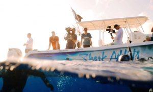 10 Ways to be on Shark Week
